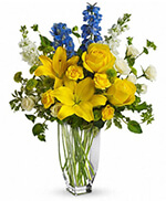 Meet Me in Provence by Teleflora